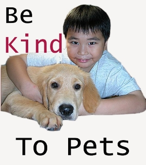 Be Kind To Pets - Singapore