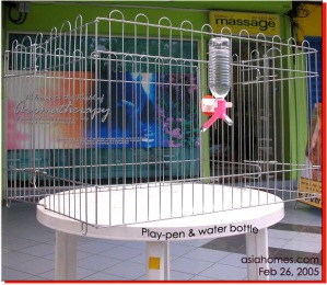 A playpen commonly used as Singapore's puppy housing. Toa Payoh Vets