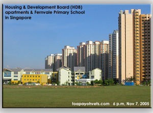 New HDB Housing Estate & Fernvale Primary School. Toa Payoh Vets