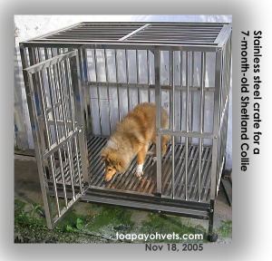 Stainless steel cage 4 feet wide, for bigger breeds, Sheltie. Toa Payoh Vets