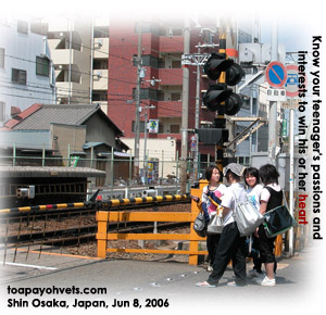 A busy railway crossing. Trains every few minutes. Bright cool summer's day at Shin Osaka Jun 8 06. Toa Payoh Vets