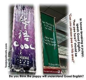 Speak Good English campaign may not be practical for housebreaking a puppy. Toa Payoh Vets