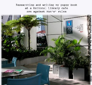 Singapore National Library's Han's Cafe at 9 a.m is peaceful. Toa Payoh Vets