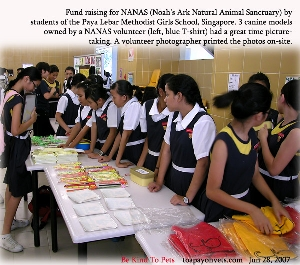 Proactive secondary one students of Paya Lebar Methodist Girls School, raising fund for NANAS. Toa Payoh Vets.