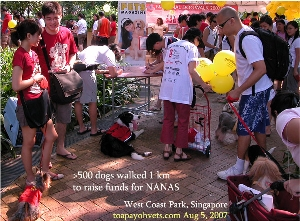 Great fun for >500 dogs to meet and sometimes fight other dogs. Toa Payoh Vets