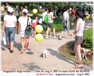 Singapore National Dog Walk and a doggy movie, Aug 5, 2007. Toa Payoh Vets