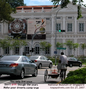 National Museum of Singapore in 2007. Toa Payoh Vets.