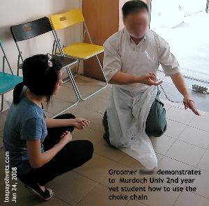 Teaching the young vet student about dog restraint. Toa Payoh Vets