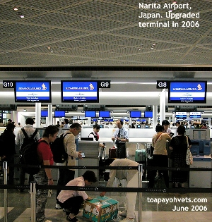 Low ceiling and dark departure area at Narita Airport's new extension in 2006. Toa Payoh Vets