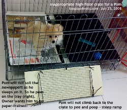 Crate with high floor not appropriate for short-legged Pom. Toa Payoh Vets