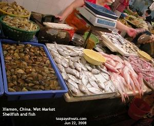 Wet Market, Xiamen, China. Fishes, Shellfish. Toa Payoh Vets