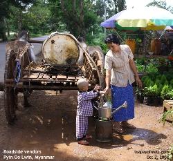 Roadside vendors, fruits, vegetables, flowers, Myanmar_Pyin_Oo_Lwin_ToaPayohVets