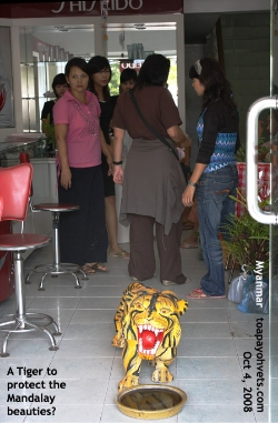 A tiger statue guards the shop facing main busy road. Toa Payoh Vets