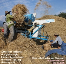 The threshing machine takes out much drudgery out of farm labour. Kachin State, Myanmar, Toa Payoh Vets