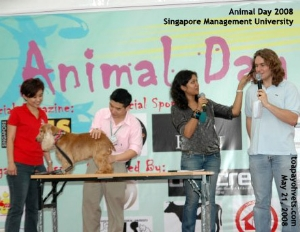 Animal Day 2008. Singapore Management University. Toa Payoh Vets